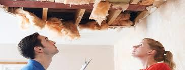 Ceiling Repairs Companies Nigel Central